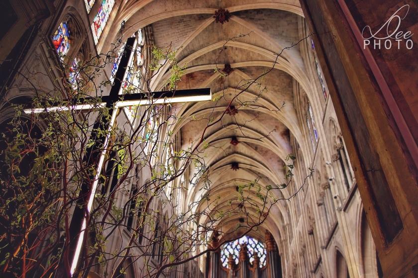Saint-Severin (18)
