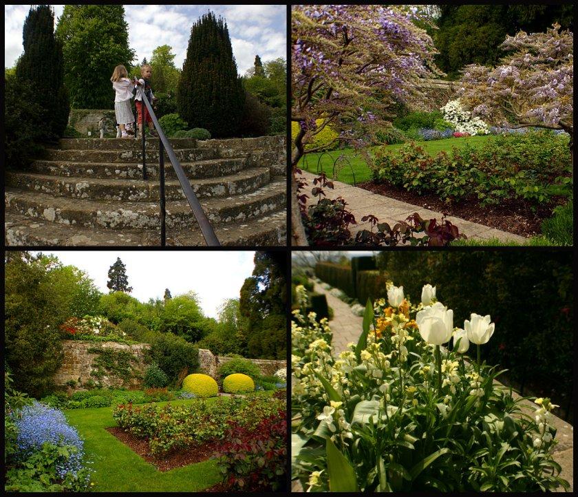 collage ogród