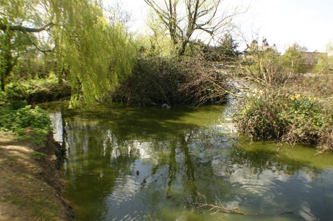 Broadditch farm (8)